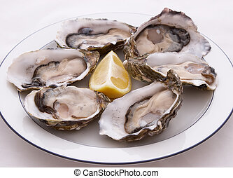 Plate Of Oysters - Half a dozen Oysters on a plate with a...