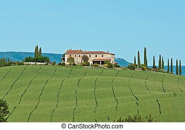 Val dOrcia a primavera - vecchio casale in un campo di...