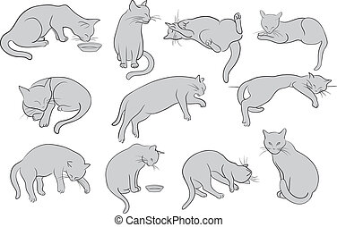 Set of line cats silhouette