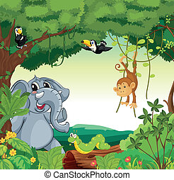 Animals in the forest - Illustration of a forest scene with...
