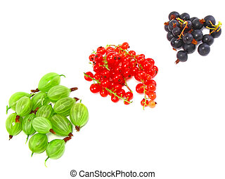 Berry mix- red and black currant. Isolated. - Heaps of berry...