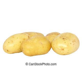 Potatos . Isolated over white bachground