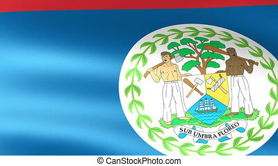 Belize Flag Waving
