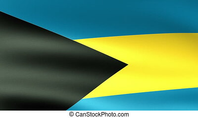 Bahamas Flag Waving