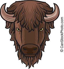 huvud, buffel