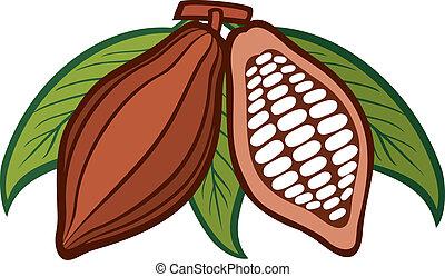 cacao, -, cacau, feijões