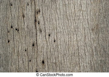 Wooden board woodworm holes - Old weathered grey wooden...
