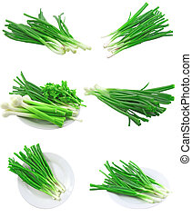 Collage (set) of young onion on white. Isolated - Collage...