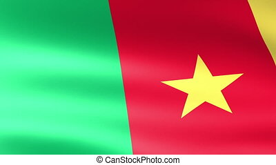 Cameroon Flag Waving