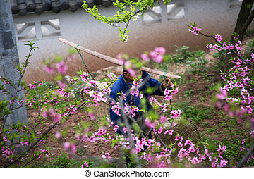 China Peasant peach trees - Chinese Peasant Carrying objects...