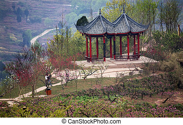 China Red Pagoda Sichuan - China Red Pagoda, Peach Blossoms,...