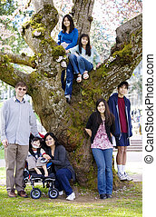 Family of seven by large cherry tree in full bloom -...