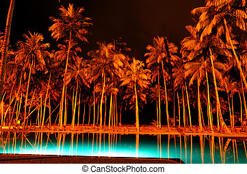 Night illumination of swimming pool and palms at luxury...