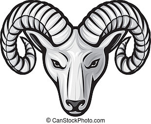 head of the ram ram head