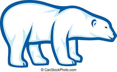 polär, björn