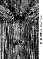 old wooden planks - Close view detail of an old texture of...