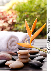 Zen stones and heliconia spa concept