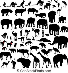 Animal silhouettes - Lots of Animal silhouettes