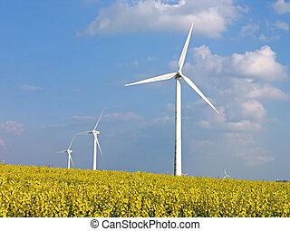 Wind turbines in rapes field - Alternative energy -...