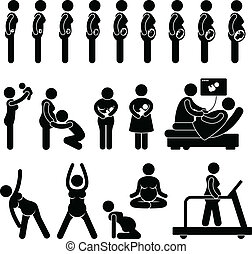 Pregnancy Pregnant Process Stage - A set of pictogram...