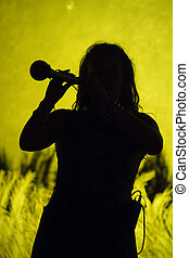 silhouette of medieval flute player - View of a silhouette...