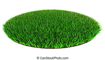 green grass disc shape - Beautiful green grass disc shape on...