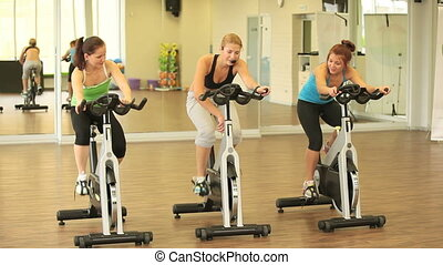 Sport exercising - Group of slim girls training on cycles...