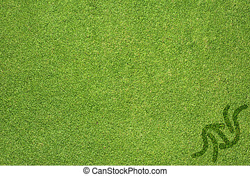 Sport judo on green grass texture and  background