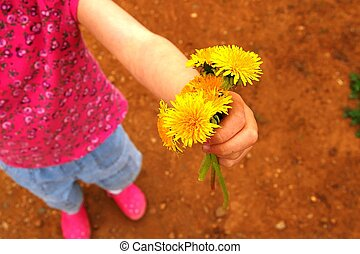 Dandelion Offering - Small child giving away a clump of...
