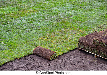 rolled sod - Rolls of sod for new lawn.
