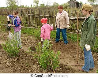 jardinería, familia