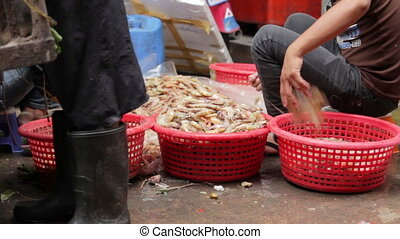 prawns on ground unhygienic