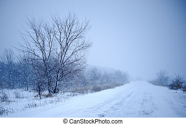 winter road - Snow blowing over road in blizzard conditions...