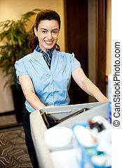 tarefas domésticas, executivo, Empurrar, carreta