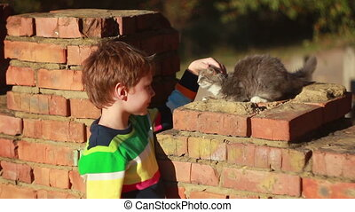 Boy playing with cat