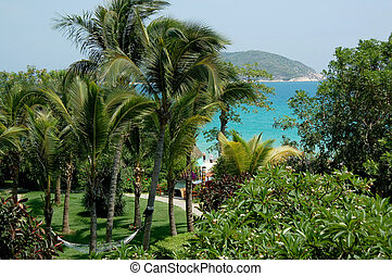 paradise garden in Hainan - Tropical paradise garden in...