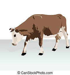 Cow - Cattle. Animal on the farm. Illustration on white...