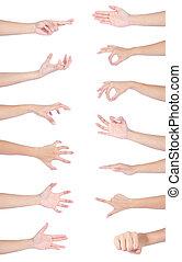 cobrança, mulher, mãos, mão, segurando