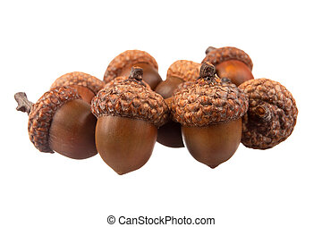 Bunch of acorns over a white background
