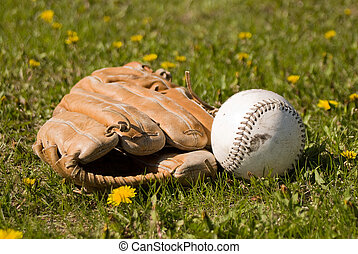Mitt and Softball - A softball and mitt lying in the grass...