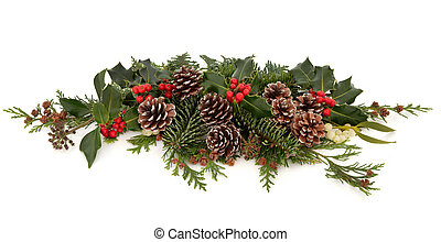 Winter Flora and Fauna - Winter and christmas floral...