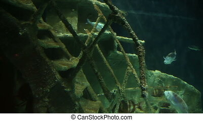 Sunken Ship at deep underwater
