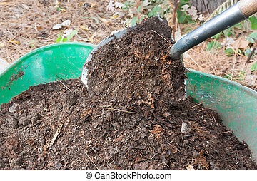 Shovel Pours Compost into Wheelbarrow - Shovel Shovel Pours...
