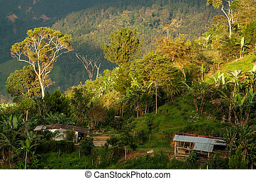 Colombian Countryside - A view of the countryside in...