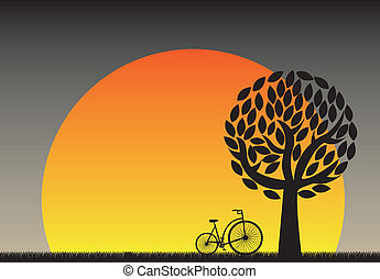 Sunset  - beautiful sunset in the field with a bicycle