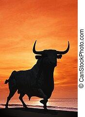 Bull against sunset, Spain. - Bull statue against an orange...