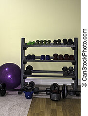 The exercise rack
