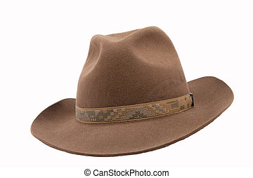 brown fedora felthat isolated on white background