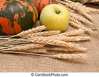 Pumpkins, apple and wheat