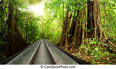 Bring rain forest to your business center - Moving walkway...